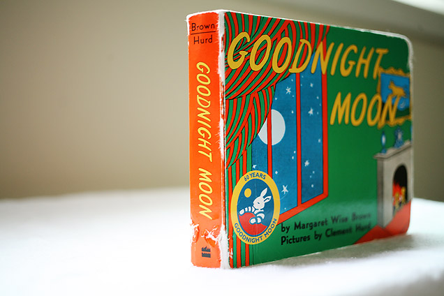 daily  Goodnight Moon