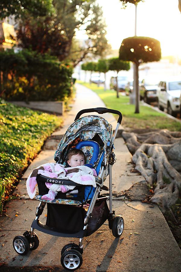 daily  An evening walk