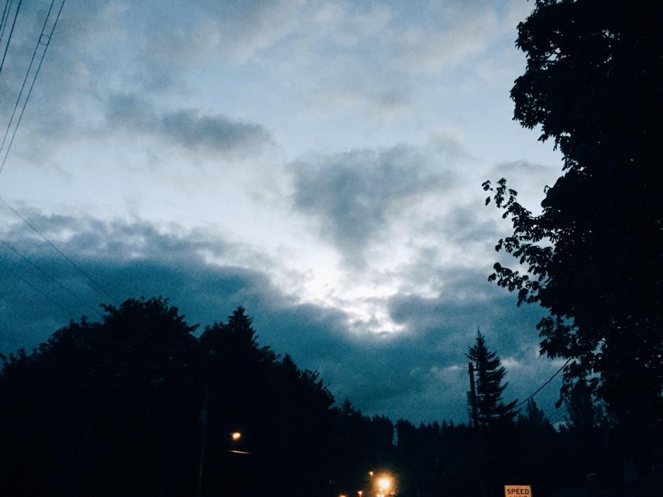dawn silhouettes