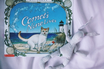 comets nine lives book