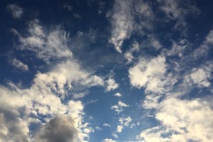 phoenix sky